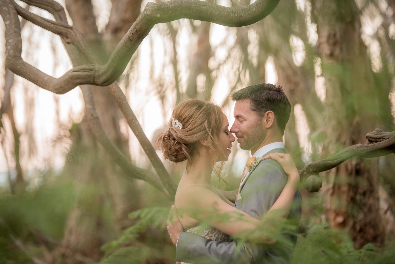 newlyweds kiss amongst the ferns