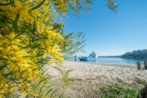 Redlands Coast | Redlands City Council | Brisbane | stradbrokeislandphotography.com