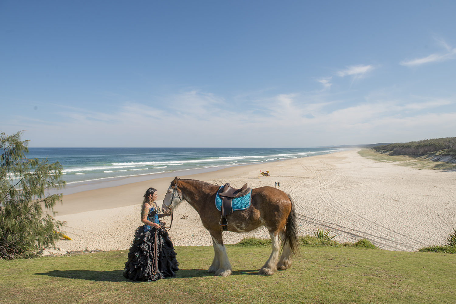 arriving to your wedding on a horse